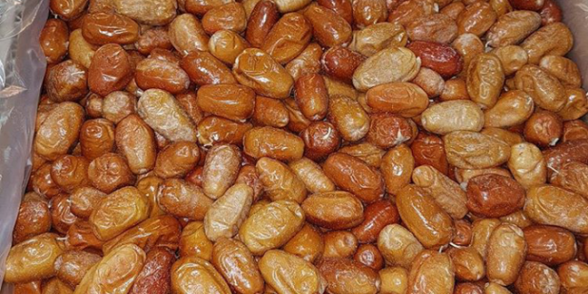 سنجد حاج حسینی و قیمت عمده سنجد در بازار