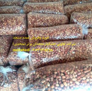 خرید و فروش سنجد
