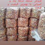 فروش انواع سنجد با بهترین کیفیت و قیمت